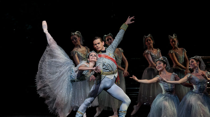 2014 production of the sleeping beauty