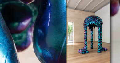 Dan Lam Exhibition Ready For Viewing at Nasher