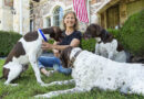 American Family Goes to the Dogs, Cats