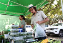 St. Michael's Farmers Market Celebrates 10th Anniversary